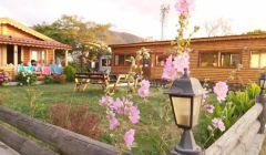 Bungalov Evler ve Bahçe