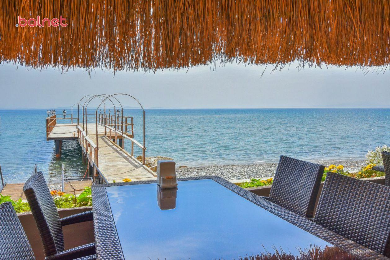 Cafe, Plaj ve İskelemiz