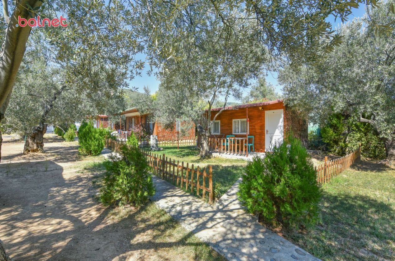 Bungalow Evlerimiz ve Bahçe